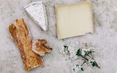 5 buoni motivi per mangiare formaggio