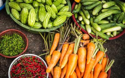 Foodpedia: un'enciclopedia alimentare