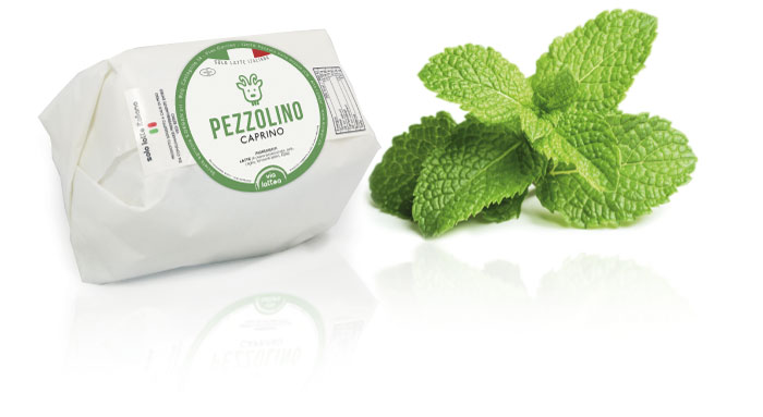 Pezzolino fresh goat cheese