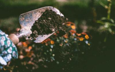 Agricoltura intensiva ed erosione del suolo