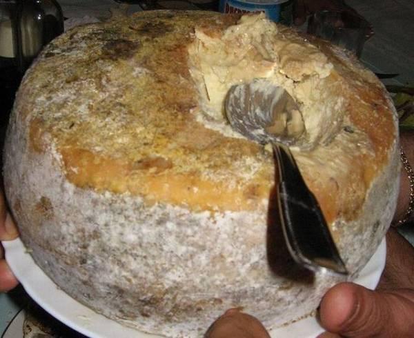 Casu martzu il formaggio con i vermi