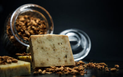 L'odore dei formaggi come vettore di comunicazione tra batteri