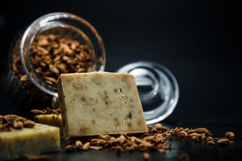 Odore formaggi vettore di comunicazione di funghi e batteri